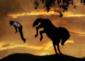 Schop 2020 Weg Paard